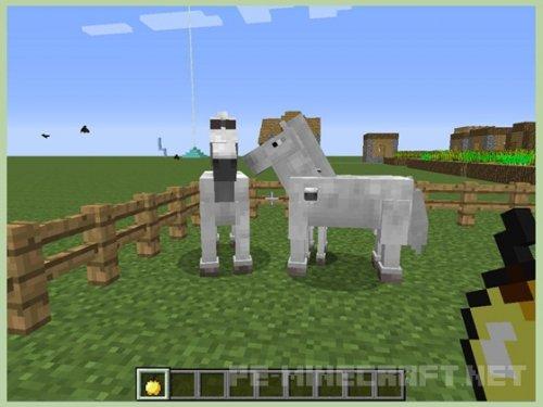 Как размножать лошадей в Minecraft PE