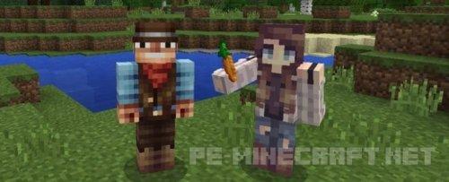 Мод No Nametag для Minecraft Pe 0.17.0
